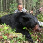 Alberta black bears